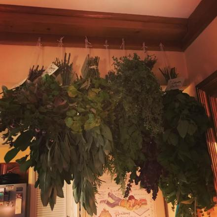 herb harvest 2017
